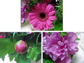 080702flower03.jpg