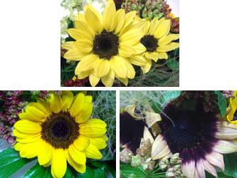 080702flower06.jpg