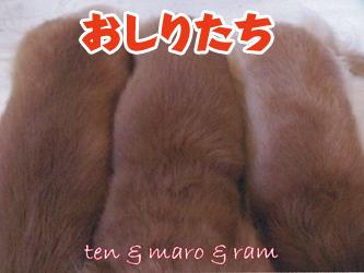 100209tenchan06.jpg